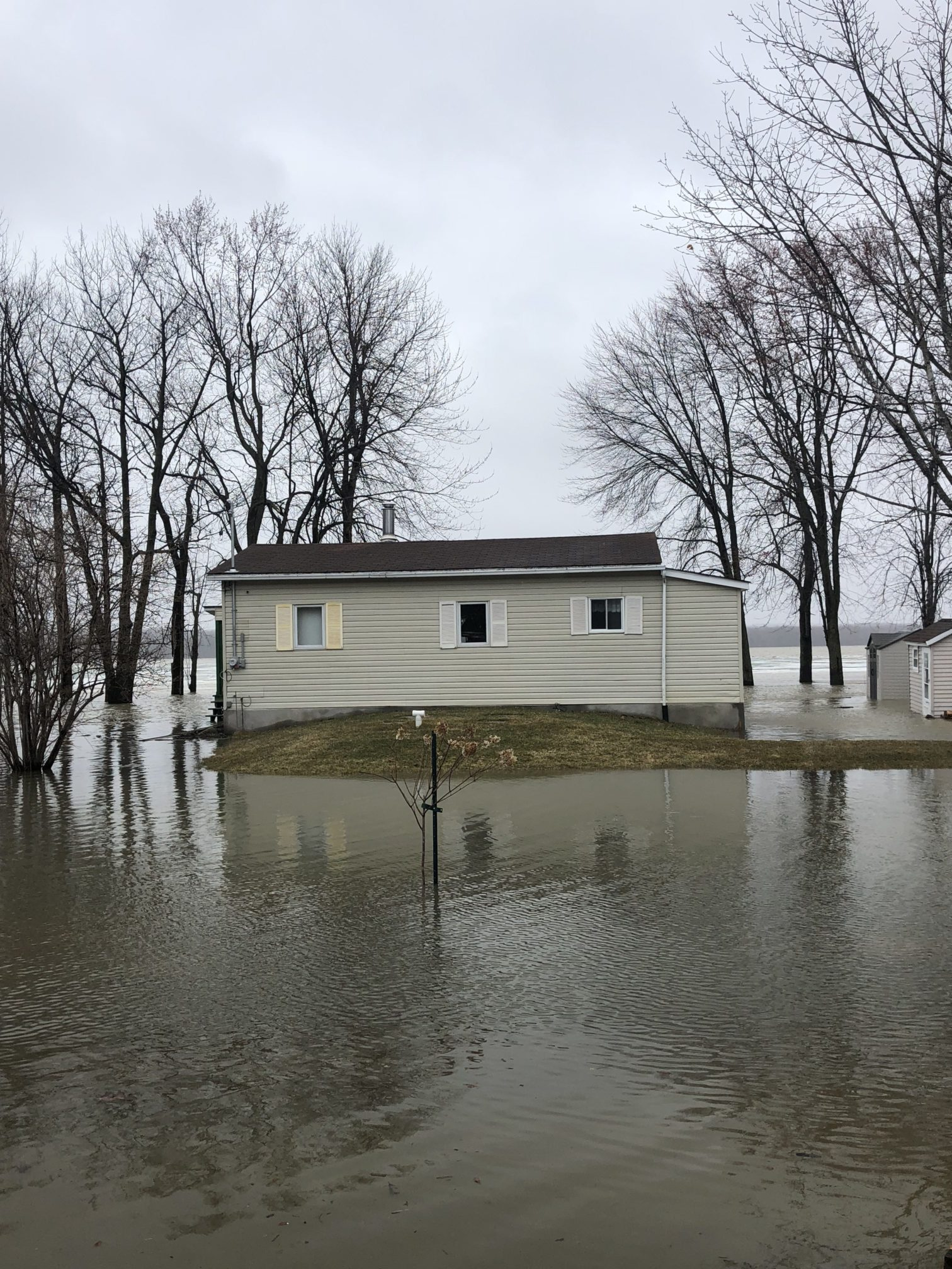 Septic system in a flood zone